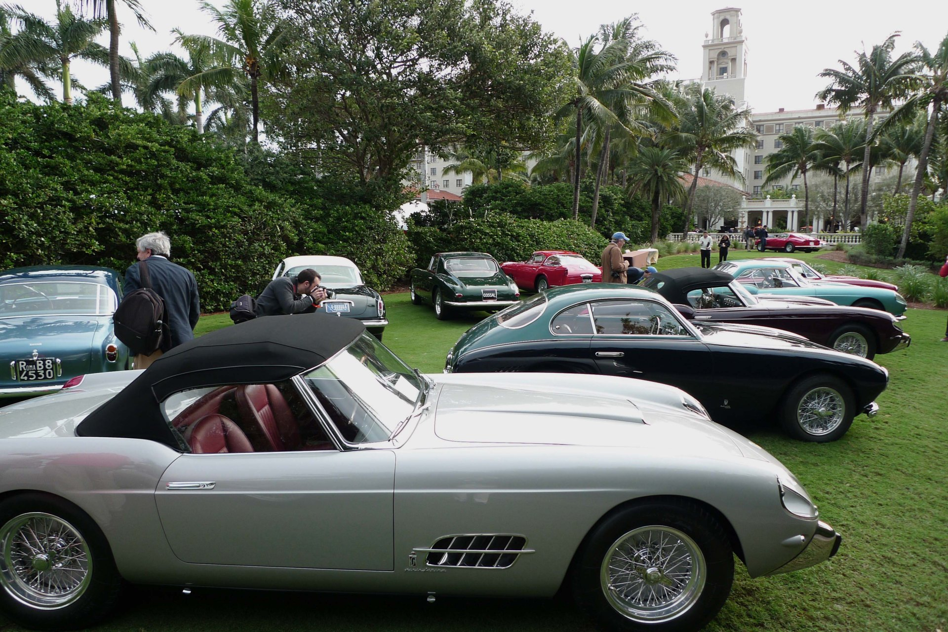 Cavallino show winners. Photo by Simon Aldridge.